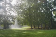 (celis.marianne) Tags: morninglight fog