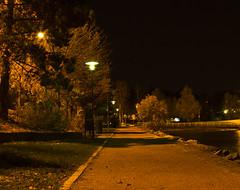 A lonely night (Vidar Ringstad, Norway) Tags: longexposure autumn trees cold nature lamp oslo norway night canon dark eos norge nightshot streetlamp norwegen 7d boardwalk blacksky bekkelaget ormya