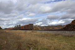 17 loads at Fifield (Rich Peters- foosqust) Tags: railroad cn train fifield pulpwood