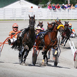 ©TPEI011_AM_Chtown_Harness_Racing_S thumbnail