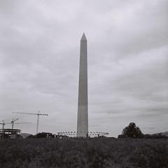 Washington (Yankle Shmeel) Tags: blackandwhite bw 120 film analog washingtondc washington tmax d76 lubitel2 tmax400 120mm
