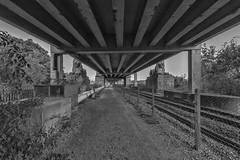 Underneath Britannia Bridge, Anglesey ('Grumps') Tags: bridge bw blackwhite railway lions underneath beneath girders britanniabridge
