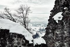 Neuburg bei Koblach (macplatti) Tags: castle austria ruine renovierung aut neuburg mittelalter vorarlberg koblach strassenuser