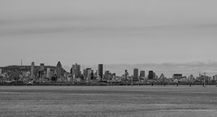Montreal skyline (Maciek Lulko) Tags: blackandwhite bw panorama canada skyline architecture skyscraper river nikon waterfront skyscrapers montral riverside quebec montreal architektur nikkor architettura architektura contemporaryarchitecture nikkor2870 architecturephotos architekturawspczesna waterandarchitecture