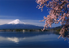 postcard - Mt. Fuji (Jassy-50) Tags: postcard japan unescoworldheritagesite unescoworldheritage worldheritage whs cherryblossoms flowers mtfuji fuji mountain volcano kawaguchilake kawaguchi lake water reflection unesco worldheritagesite