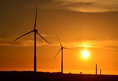 Bald Hills Wind Farm (phunnyfotos) Tags: sunset summer silhouette nikon australia victoria vic windturbine windfarm goldenhour gippsland baldhills electricitygeneration southgippsland tarwinlower powerindustry d5100 nikond5100 phunnyfotos