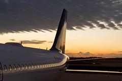 B6.A320.N509JB.2015-01-20.KMCO-A320-232.j-r (320-ROC) Tags: orlando airbus jetblue mco a320 orlandoairport orlandointernationalairport airbusa320 a320232 jetblueairways kmco airbusa320232 n509jb orlandomccoyinternationalairport