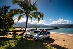 Under the shade of a palm tree (Melanie K Reed Photography) Tags: hawaii pier palmtree kauai hanaleipier hanalei hawaiianvacation kauaivacation hanaleibeach
