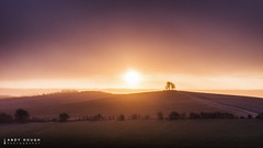 Those fleeting moments (Andy Hough Photography) Tags: morning winter england sun nature weather sunrise countryside unitedkingdom sony wallingford wittenhamclumps southoxfordshire barrowhill a99 sonyalpha andyhough slta99v andyhoughphotography
