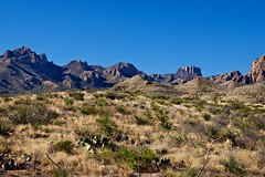 A Roadside View of the Chisos Mountains (Big Bend National Park) (thor_mark ) Tags: mountains nature texas unitedstates blueskies portfolio day3 bigbendnationalpark desertlandscape lookingsouth casagrande chihuahuandesert chisosmountains project365 colorefexpro apertureedited mountainsindistance lostminepeak usbiospherereserve nikond800e triptobigbendguadalupemountainsnationalparks drivetosantaelenacanyon