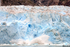 Calving Glacier, Tracey Arm Fjord (zoomerphil) Tags: snow cold ice water berg alaska frozen arm yacht gull prince william glacier anchorage freeze sound tracey tern seward calving glacial bergy calve