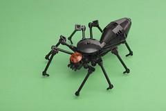 Anglų lietuvių žodynas. Žodis arachnids reiškia voragyvių lietuviškai.