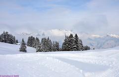La Lécherette/Les Mosses (CH) (Annelise LE BIAN) Tags: sunshine suisse bleu damn nuages blanc paysages chalets montagnes nwn coth supershot fabuleuse alittlebeauty neigeetglace lalécherette