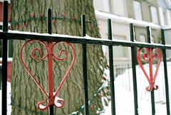 Fence Hearts