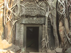 The Root Engulfed Door at Preah Khan