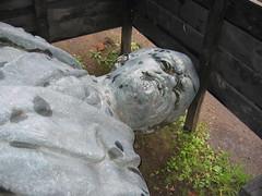 Lenin Statue Tore Down