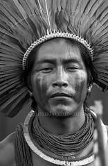 Xikrin (guiraud_serge) Tags: brazil portrait brasil amazon indian tribe ethnic indien matogrosso indio labret brésil tribu amazonie amazone forêttropicale ethnie kayapo kuikuro metuktire plateaulabial hautxingu parcduxingu sergeguiraud artducorps ornementcorporel