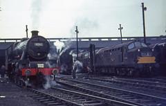 45565+70016+D6849 Glasgow (66A) 24 Sept.1966 (Brit 70013 fan) Tags: ariel br glasgow jubilee shed victoria 1966 steam m depot british railtour railways steamengine britannia mpd britishrailways polmadie 45565 66a 70016 mpds southyorkshireman d6849