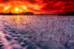 FOOTPRINTS IN THE SNOW (Slawek A7) Tags: life light sunset naturaleza sun sunlight sol nature backlight contrast canon landscape landscapes raw sunsets poland wideangle vida puestadesol 1022mm polonia backlighting nationalgeographic xsi granangular acontraluz efs1022mmf3545usm 450d canoneos450d rebelxsi kissx2 nationalphotographic