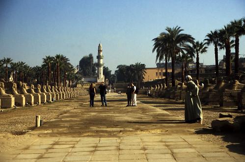 """Ägypten 1999 (258) Tempel von Luxor: Sphinxallee und El-Mekashkesh Moschee • <a style=""""font-size:0.8em;"""" href=""""http://www.flickr.com/photos/69570948@N04/27690748614/"""" target=""""_blank"""">View on Flickr</a>"""