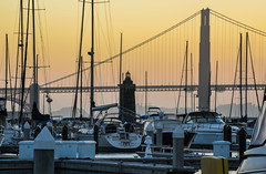 marina green sunset (pbo31) Tags: sanfrancisco california nikon d810 july 2016 color summer bayarea boury pbo31 city goldengatebridge sunset bridge 101 bay silhouette orange lighthouse sail boat marina yellow sailboat docks