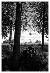 Prs de la fontaine Sainte-Genevive - Barcy (DavidB1977) Tags: bw france 35mm nikon nb nikkor fontaine iledefrance ais croix seineetmarne saintegenevive barcy d7100
