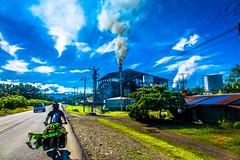 A palm oil plant in Parrito.