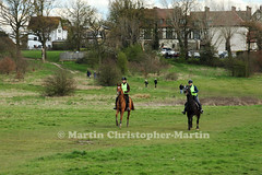 Horses on Chingford Plain 1 (martin christopher-martin) Tags: epping eppingforest chingfordplain horses horse rider horseriders equestrian canter trot gallop walk
