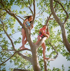 Film (7thound) Tags: girls summer tree 6x6 film beach kids analog mediumformat children climb play kodak michigan lakemichigan greatlakes climbing squareformat analogue kiev kiev60 elkrapids northernmichigan kodakportra160 puremichigan