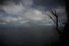 Near Perce with dead tree (Camerai) Tags: perce quebec deadtree sea ocean water clouds