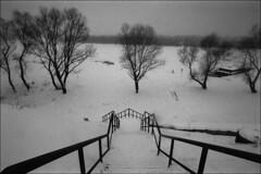 The frozen Don (misha maslennikov) Tags: bw film f3 nikon maslennikov don steep vioshenskaya otherrussia russia
