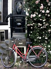 Bike (Mel s away) Tags: amsterdam netherlands  bike park parking transportation