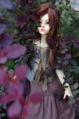 Forest witch (Lau-rain) Tags: doll bjd msd planetdoll katie dollstown 7y outdoor
