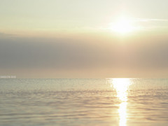 Seaside Morning (Saga) Tags: baltic sea seaside sunrise mist shimmer water warm summer holidays calm sun yellow