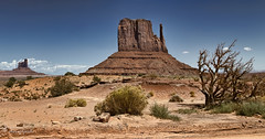 travels on the healing road (cherryspicks (intermittently on/off)) Tags: landscape desert monumentvalley utah southwest usa rocks geology outdoor travel offroad drywood arid