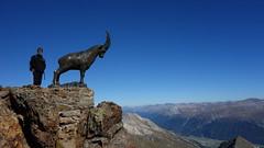 DSC04013 (mariosbm) Tags: suiza 2016 bernina septiembre monte sankt moritz
