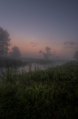 Misty morning (k.tusnio) Tags: mist fog sunrise morning landscape hdr nikon d5100 samyang 14mm poland rogalin polska poznan warta grass tree sky moon fowers