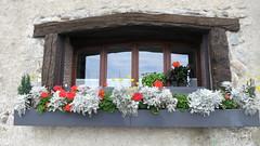 Window (Atila Yumusakkaya) Tags: yvoire france yumusakkaya window