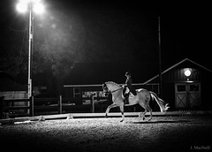 Dancing in the Dark (Jen MacNeill) Tags: horse dressage night dressageatdevon devon show blackandwhite bw horses equestrian lights spotlight floodlight