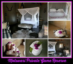 Pure luxury (crafty1tutu (Ann)) Tags: travel holiday southafrica africa 2016 motswariprivategamereserve room chalet luxury beautiful crafty1tutu canon5dmkiii canon24105lserieslens anncameron