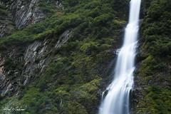 Bridal Viel Falls (Alfred J. Lockwood Photography) Tags: alfredjlockwood nature landscape waterfall canyon richardsonhighway valdez morning summer overcast alaska cliff forest keystonecanyon chugashmountains