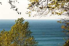 (klgfinn) Tags: autumn balticsea cloud landscape leaf sea shore sky skyline slope steepslope tree water