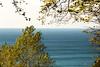 Лес на берегу (klgfinn) Tags: autumn balticsea cloud landscape leaf sea shore sky skyline slope steepslope tree water балтийскоеморе берег вода горизонт дерево лист море небо облако обрыв обрывистыйсклон осень пейзаж