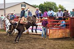 Hang On! (Chris Huddleston) Tags: bronc saddle rodeo buck horse cowboy