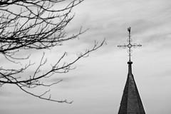 Kirchenspitze (Darenae) Tags: schwarz weis bw sw black white g6 kirche church eifel cross germany deutschland religion baum himmel blau tree sky blue family winter familie