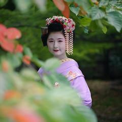 Maiko20161017_03_16 (kyoto flower) Tags: tanan fukuno kyoto maiko 20161017     gaap