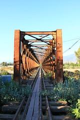 Red Muerta (El Sirio) Tags: chile bridge train tren puente la valparaso norte ferrocarril rayado ligua ferronor