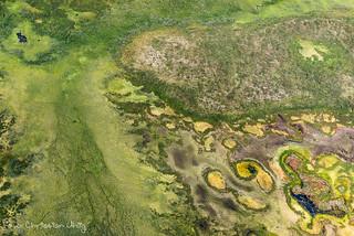 Tundra wetlans with palsas