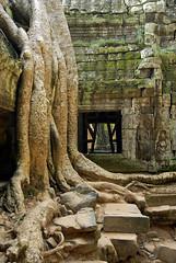 06-11-05 Laos-Camboya Siem Reap (38) R01 (Nikobo3) Tags: travel paisajes naturaleza architecture arquitectura nikon asia social unesco viajes templos siemreap angkor camboya nikond200 nikobo josgarcacobo nikondx182003556vr