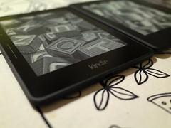 Kindle Voyage (bfishadow) Tags: amazon ebook kindle